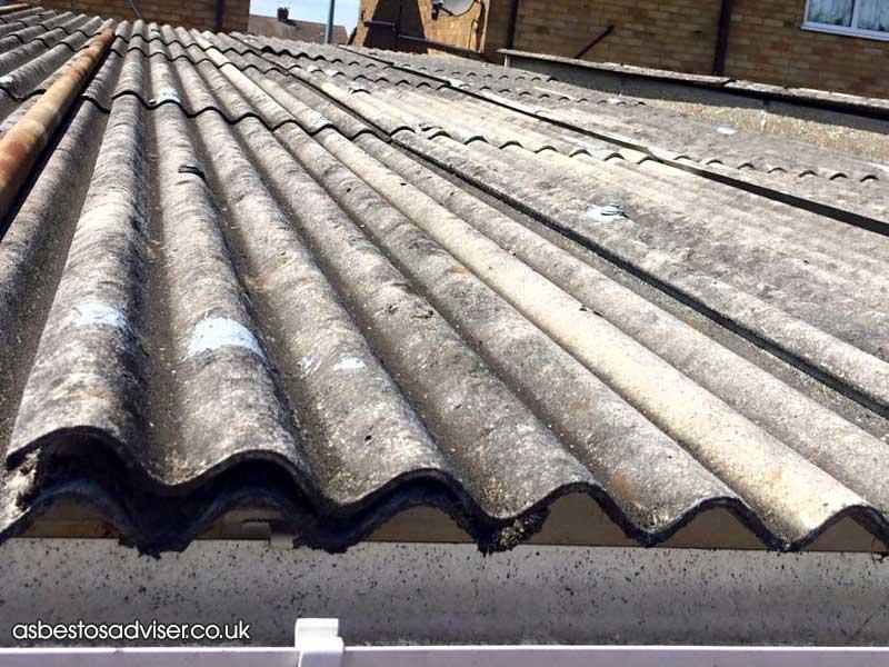 landlord asbestos responsibilities